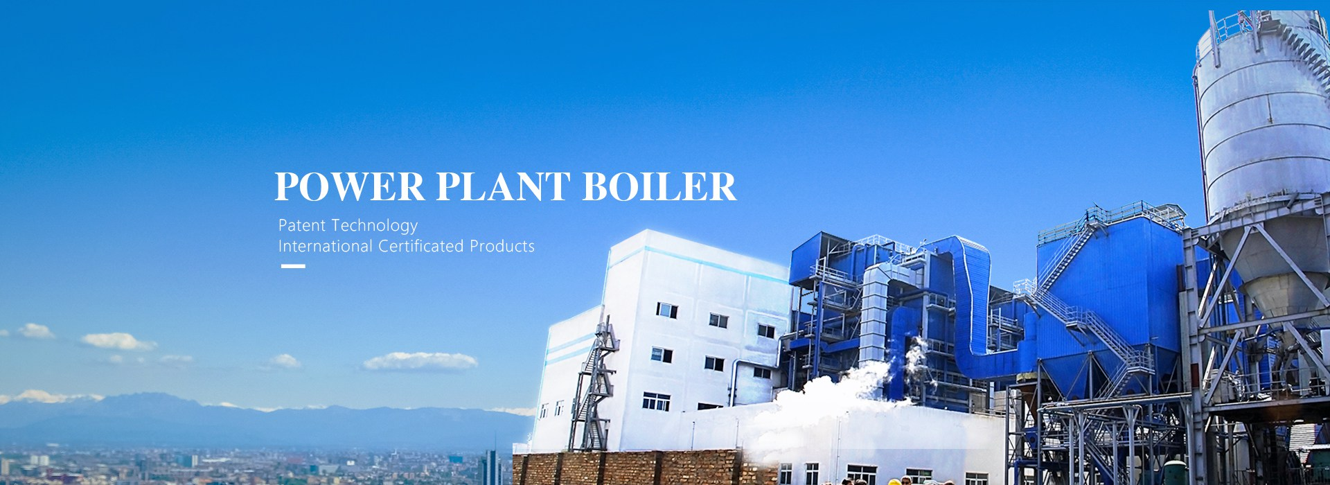 YLW Coal/Biomass Fired Thermal